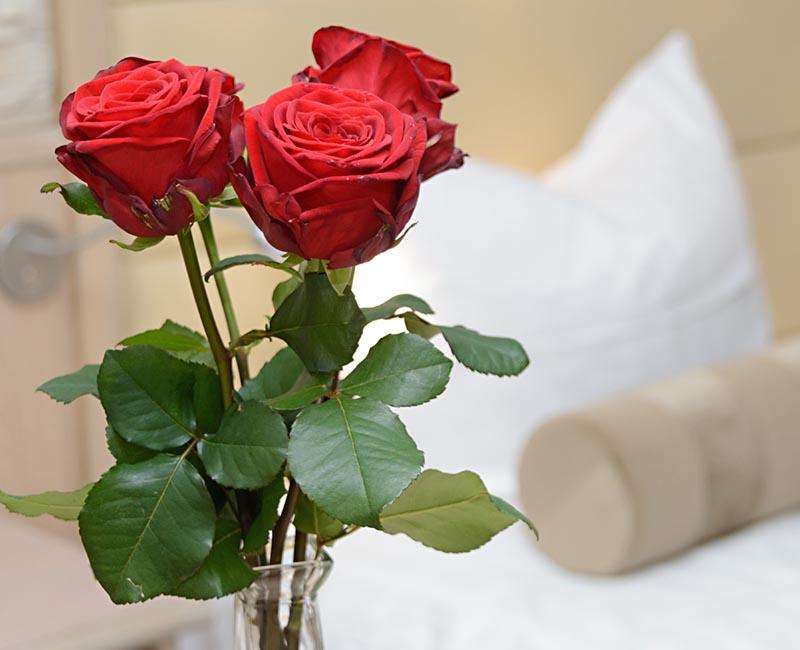 Romance / Anniversary